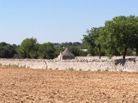 A farming trullo in use