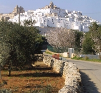 The road to Ostuni
