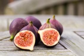succulent fioroni - figs in Latin